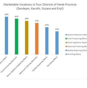 Research on Marketable Vocations in Herat Province – 2017